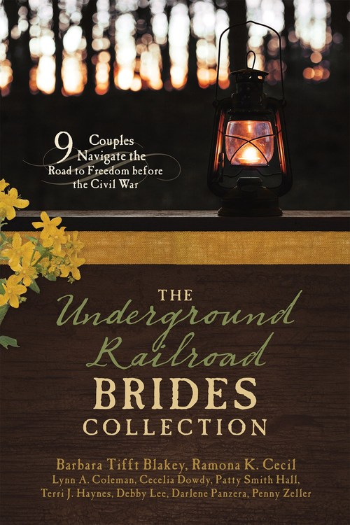 The Underground Railroad Brides Collection by Terri J. Haynes