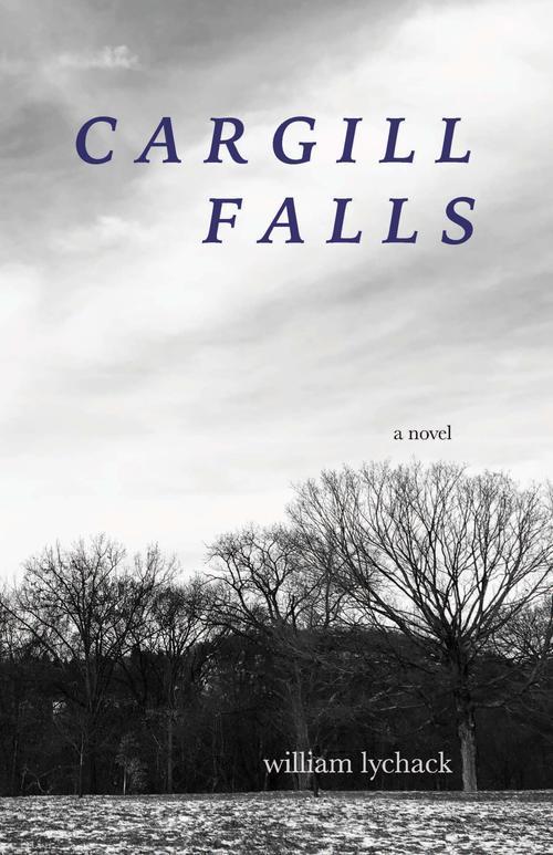 Cargill Falls by William Lychack