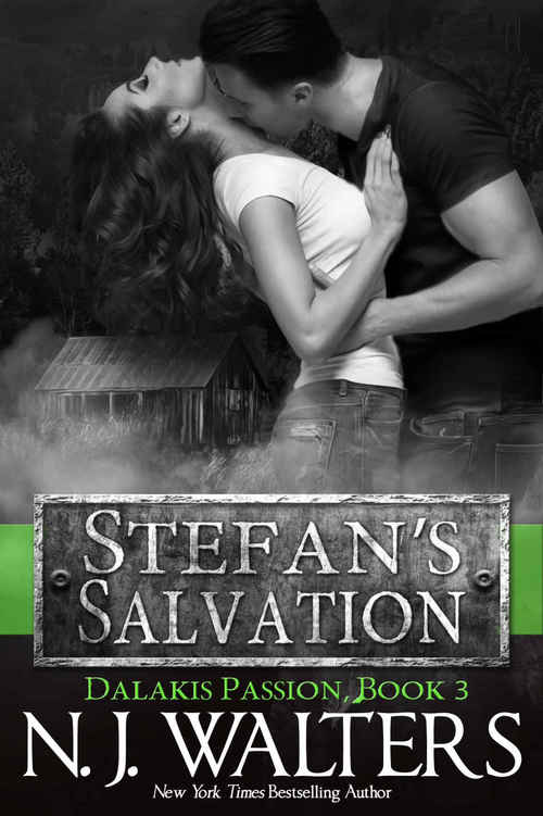 Stefan?s Salvation by N.J. Walters