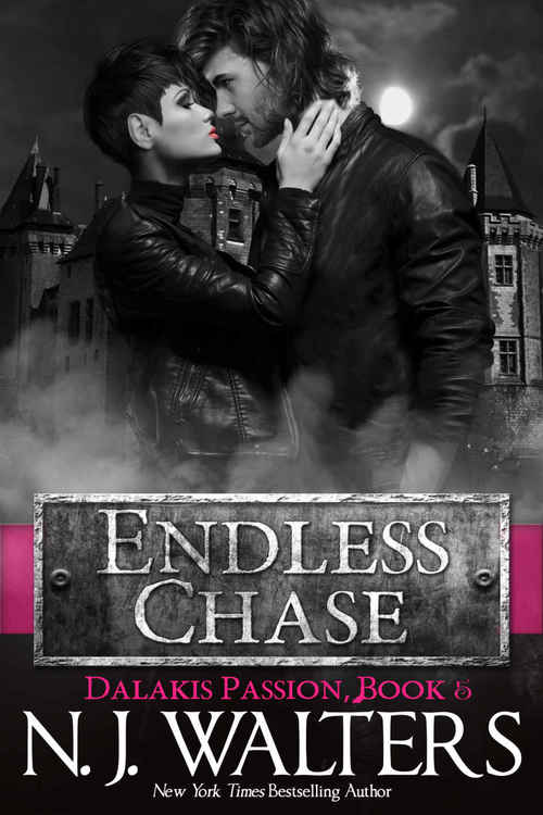 Endless Chase by N.J. Walters