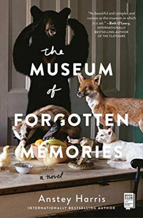 The Museum of Forgotten Memories by Anstey Harris
