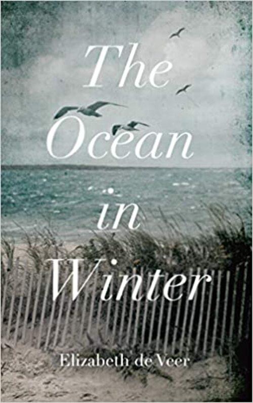 The Ocean in Winter by Elizabeth de Veer
