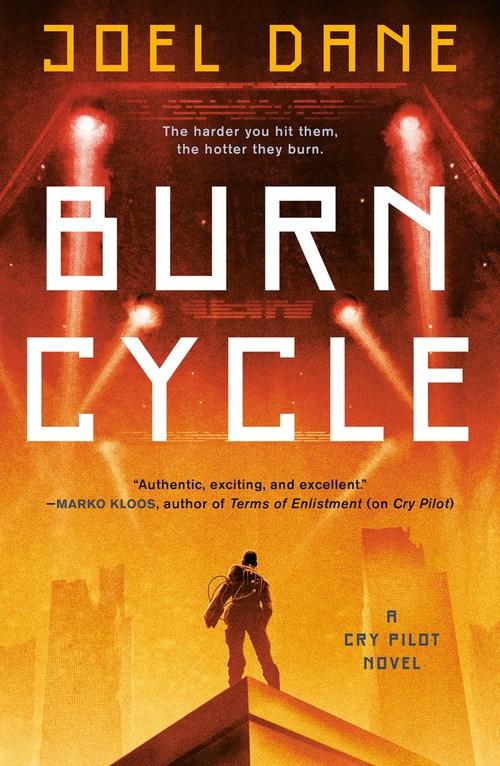 Burn Cycle by Joel Dane