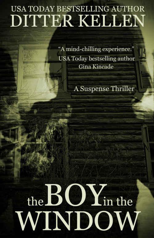The Boy in the Window by Ditter Kellen