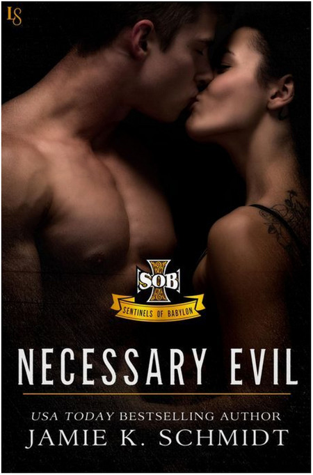 Necessary Evil by Jamie K. Schmidt