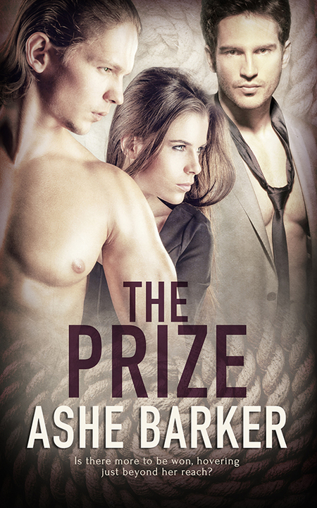 The Prize by Ashe Barker
