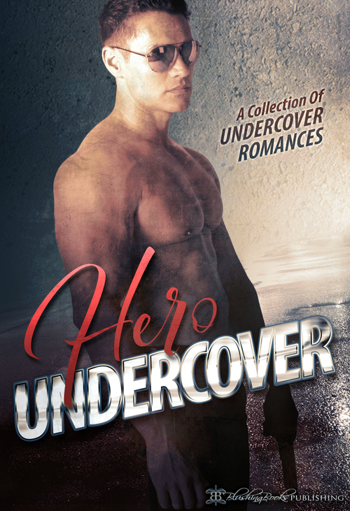 Hero Undercover by Anya Summers