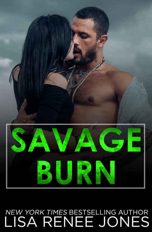 Savage Burn by Lisa Renee Jones