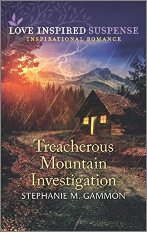 Treacherous Mountain Investigation by Stephanie M. Gammon