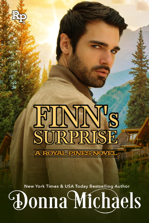 Finn's Surprise by Donna Michaels